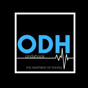 ODH_BIG