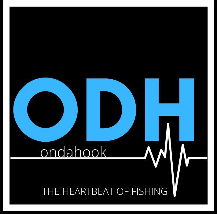 OnDaHook